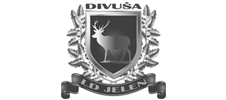 Lovačko društvo Jelen Divuša